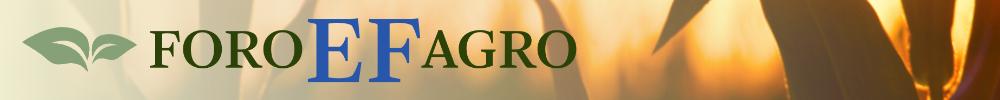 EL FINANCIERO | Foro Agro