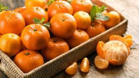 ¿Cuáles son los beneficios de comer mandarina?