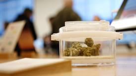 Discusión sobre la mariguana se irá hasta abril: Corte aprueba prórroga solicitada por Diputados
