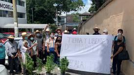 Tetecala, 'primer pueblo cannábico en México': ejidatarios solicitan licencia para sembrar mariguana