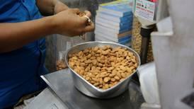 ¿Te pusieron almendras o nueces en la dieta? Este estudio te dice cuántas calorías (de verdad) tienen