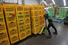 Exportaciones en septiembre se desaceleran por cuarto mes consecutivo