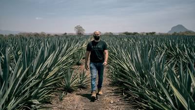 'Bye' al duopolio del tequila y el mezcal en EU; impulsan nueva bebida de agave