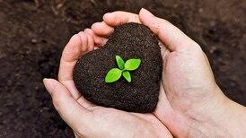 ¿Quieres festejar un 14 de febrero sustentable? Sigue estas recomendaciones de Greenpeace