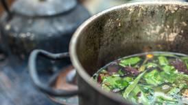 La ayahuasca no solo tiene efectos psicodélicos: también ayuda a generar nuevas neuronas