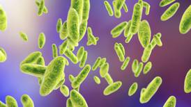Nueva bacteria 'a la vista': miles se infectan en China tras fuga de fábrica biofarmacéutica