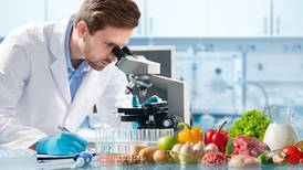 ¿Te estás nutriendo bien? Checa los mejores alimentos para prevenir enfermedades según Harvard