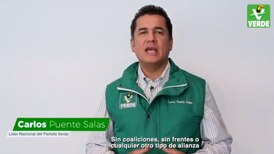 El Partido Verde anuncia que irá sin alianzas en elecciones de alcaldías de 2021