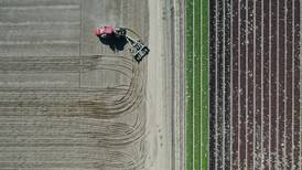 Relaciones comerciales México-EU se 'deterioran rápidamente': líderes agrícolas estadounidenses