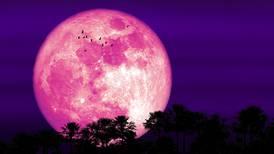¡Ya casi! Hoy por la noche podrás ver la 'Luna de Fresa'