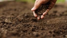 Salud y condición del suelo, clave para mejorar la producción agrícola