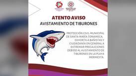 ¡Cuidado! Autoridades de Oaxaca reportan avistamiento de tiburones en esta playa