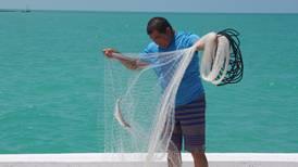 12 mil pescadores yucatecos salen al mar al final de la veda de mero