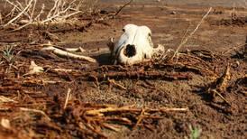 La sequía, la razón de que Banxico sorprendiera con alza a tasa de interés