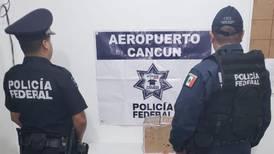 Aseguran casi 2 kg de mariguana en empresa de paquetería de Cancún