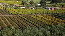 Jalisco aprueba la primera Ley Agroalimentaria que se promulga en el país