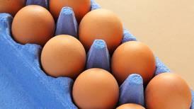 Precios del pollo 'le dan alas' a Bachoco: ingresos crecen 27% en el segundo trimestre