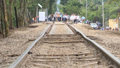 Semarnat autoriza fase 1 del Tren Maya, aunque se afectarán 800.95 hectáreas de selva