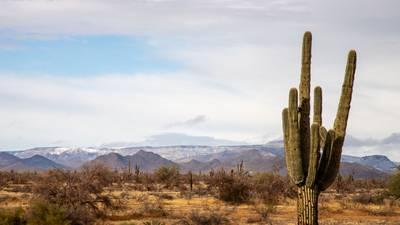 El lugar con mayores temperaturas del mundo está en México