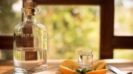 Hace 10 años fue el boom del tequila, ahora será el del mezcal