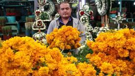 ¿Ya compraste tus flores de cempasúchil? Sheinbaum te invita a que lo hagas para apoyar a productores