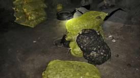 Aseguran 6.5 toneladas de almeja Catarina en Baja California Sur