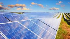 Ante reforma eléctrica, Rengen frena proyectos solares de alrededor de 150 mdd