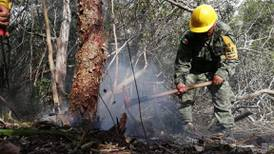 Chefs se unen para apoyar la reserva de Sian Ka'an y frenar la caza de venado