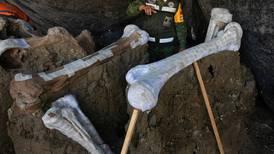 Santa Lucía, una 'central de mamuts': encuentran 200 esqueletos... y podría haber muchos más
