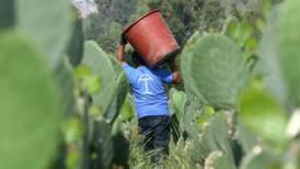 Queja de sindicatos de EU y México por tema laboral no afecta TLCAN 2.0: Campa